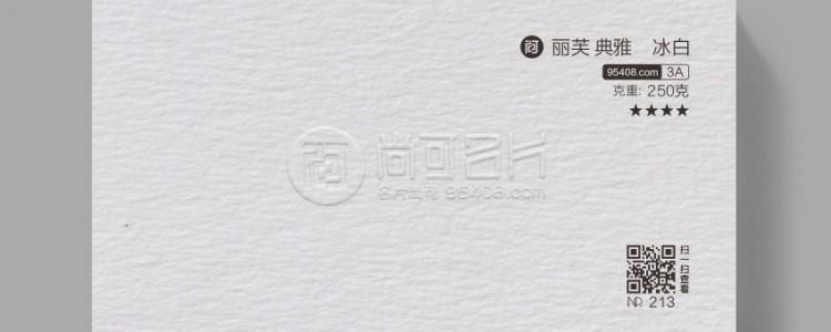 法国丽芙典雅冰白 [名片纸张] AAA 3A系列 纹路肌理
